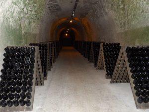 wine cellars in Reims