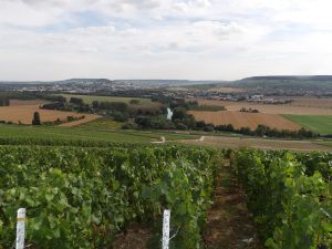 looking towards Epernay in Champagne region