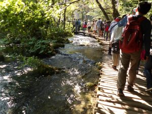 Plitvice - we were fighting the crowds a bit at times...