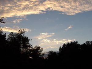 beautiful evening light