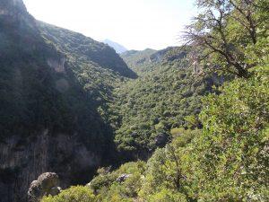 in the heart of Sierra de Grazalema - the Gagante Verde hike